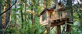treetop living innovative treehouse designs