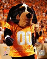 Tennessee Vols Rug University Of Tennessee Posters At Allposters Com