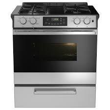 went with the framtid slide in range with gas cooktop from ikea