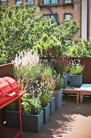 50 best images about rooftop gardens on pinterest