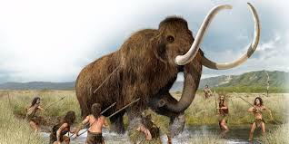 woolly mammoths brought business insider