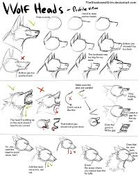 best 20 wolf head drawing ideas on pinterest how to draw dogs