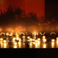 G40 Outdoor String Light Bulbs Listed Indoor Outdoor Decor