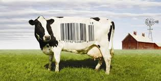 5 Most Shocking Controversies In The Food Industry - film description food inc pov pbs