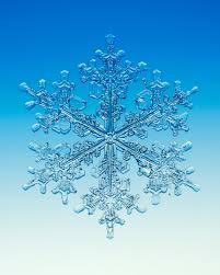 snowflake wilson bentley snowflake u2014 walter wick studio
