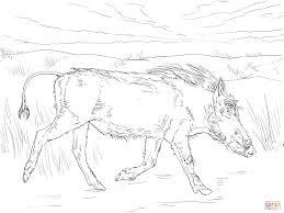 halo warthog drawing walking warthog coloring page free printable coloring pages