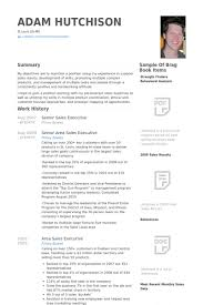 Sales Executive Sample Resume by Infographic Resume Example For Executive Senior Sales Marketing