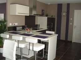 photo de cuisine ouverte idee deco cuisine ouverte collection et idée aménagement cuisine