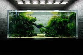 Aquascape Takashi Amano Rip Takashi Amano Zen Garage
