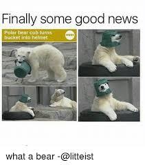 Hairless Bear Meme - 25 best memes about cub cub memes