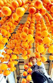 66 best dried persimmons 곶감 hoshigaki images on pinterest