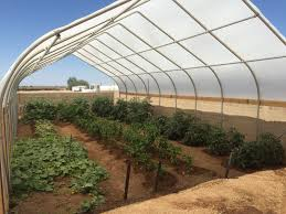 Shade Cloth Protecting Your Plants by Greenhouse Accessories For Solexx Greenhouses
