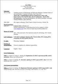 Format For Resume For Internship Sample Resume For Internship In Computer Science Free Resume