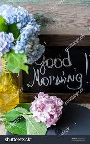 Good Vase Blue Pink Hydrangea Vase Good Morning Stock Photo 292300142