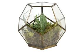 geo terrarium jayson home