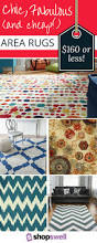 Cheap Outdoor Rug Ideas by Best 25 Area Rugs For Cheap Ideas On Pinterest Rugs For Cheap