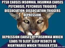 Insomnia Meme - ptsd causes insomnia insomnia causes psychosis psychosis
