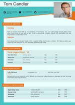 International Business Resume Sample by International Trade Resume