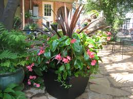 beautiful pot plants outstanding for flower pots hanging makeovers