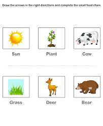 free printable kindergarten worksheets worksheets on food chain