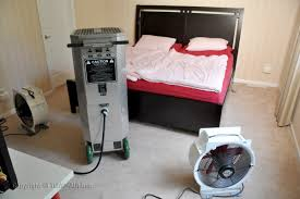 Kill Bed Bugs Heat Treatment Bedbugdogsandheat