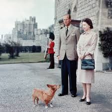 100 queen elizabeth s dog queen elizabeth celebrates 60th