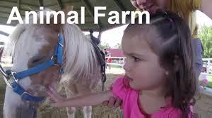 at the animal farm at thanksgiving point utah