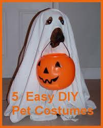 Small Dog Halloween Costumes Ideas 25 Pet Costumes Dogs Ideas Halloween