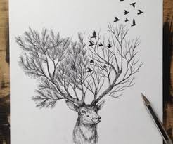 cerf foret cerf foret pinterest drawing ideas and drawings
