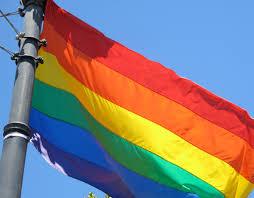 Rainbow Pride Flag Year Old Boy Wows At Nyc Pride Parade