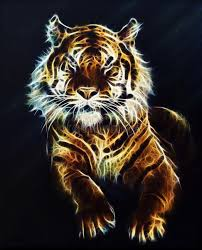 tiger fractal beautiful color ornaments background stock