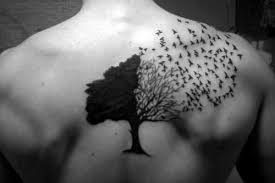 best 25 tree bird ideas on bird tree bird best 25 tree with birds