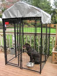 amazon com lucky dog uptown welded wire kennel 6 u0027hx4 u0027wx4 u0027l