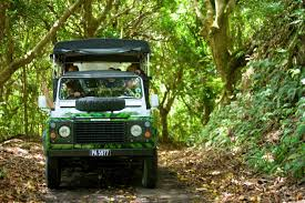 land rover jungle shore excursion 4x4 island safari u0026 beach st kitts wi