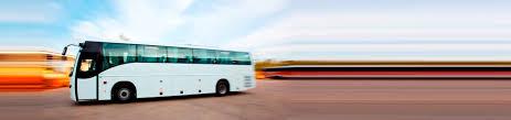 volvo transport volvo buses manali shimla manali volvo buses volvo with personal