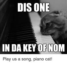 disone in da key ofnom play us a song piano cat piano meme on me me