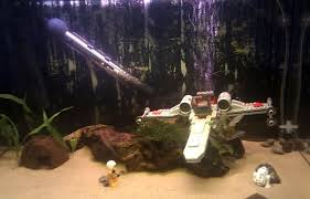 wars fish tank betta fish tank fish tanks