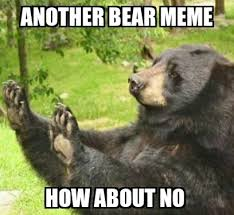 Patient Bear Meme - another bear meme meme guy