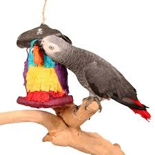 pirate parrot pinata parrot toy fill your own