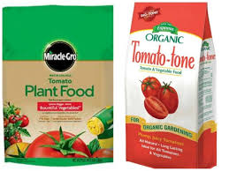kinds of tomato fertilizer what nutrients tomatoes need