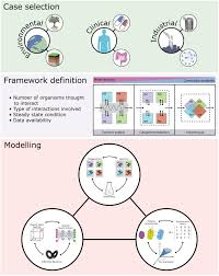 frontiers perspectives and challenges in microbial communities