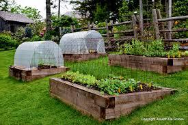 planning your homestead garden the backyard farming connection