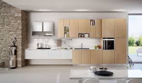 Two Wall Kitchen Design Exciting 2 Wall Kitchen Designs 43 In Kitchen Design Trends With 2