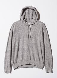 free williamson hoodie aritzia