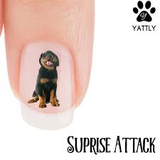 afghan hound attack rottweiler suprise attack nail art now 50 more free u2013 patch puppy