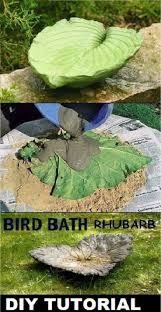 best 25 tropical bird baths ideas on pinterest green high