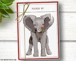 funny elephant christmas cards boxed set of 15 funny elephant