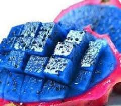 dragon fruit seeds canada selling dragon fruit seeds