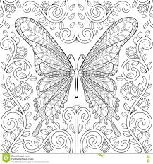 coloring book with butterfly in flowers pages zentangle v