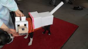 minecraft costume minecraft dog costume 7 steps